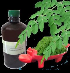 Bio Moringový olej 50 ml